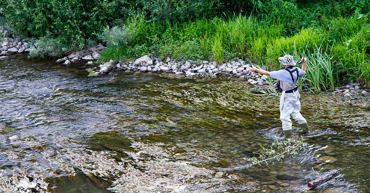 fly fishing matthew coups in long sutton